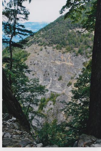 Der Weg war auf eine in den Felsen geschlagene Straße gestoßen, die an einem Abgrund entlang führte, dort verschwand die ganze Vegetation unter einer Fülle von flockigen Waldreben.