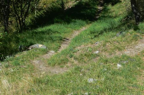 Das Paar verlangsamte seinen Schritt, denn sie hatten einen Weg genommen, der im Zickzack zu dem Dorf unten führte. Eine Zeitlang verschwand es aus dem Blickfeld der anderen.