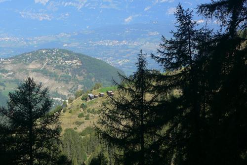 Dann öffnete sich das Tal vor ihnen. Es war ein großes Alpental mit Dörfern, aber sie beachteten es kaum, sie hatten die Landschaft auf einen kleinen Kreis um sich herum zusammengefasst, kaum dass das Grün des Abhangs und das blasse Violett der Heckenrosensträucher in ihn hinein drang.
