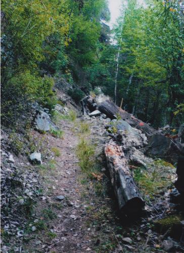 Der schmale Weg ging an Abgründen entlang, deren Tiefe er nicht ergründen konnte, denn alles war grau und dunstig geworden.